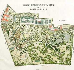 Im Jahre 1909 war der Botanische Garten noch Königlich und lag in Dahlem bei Berlin.
