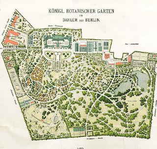 Botanischer Garten Berlin Die Idylle Trügt Arbeitsunrecht In