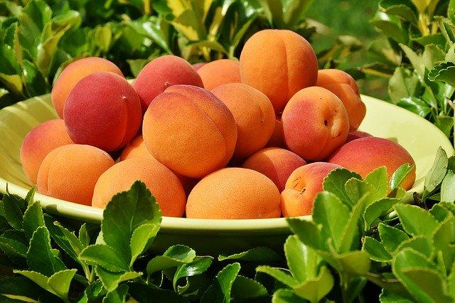 Der Duft von Aprikosen.